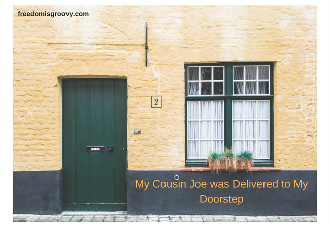 My-Cousin-Joe-Was-Delivered-to-My-Doorstep-4
