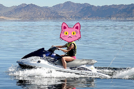 the fabulous Mrs. Groovy riding a jet ski