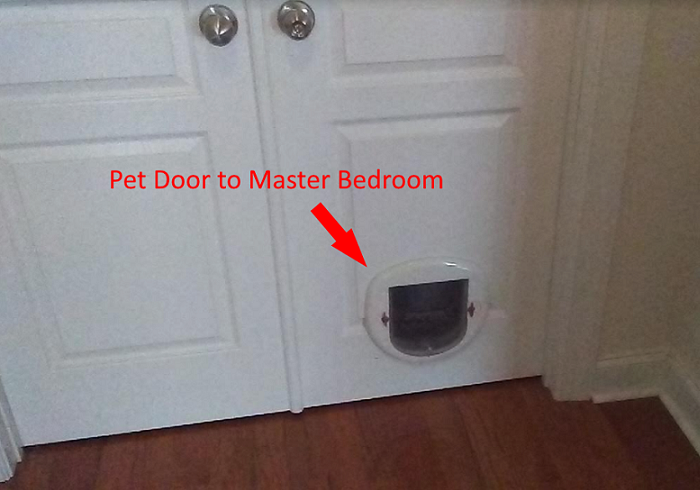 But Now Weu0027re Selling Groovy Headquarters (i.e., Our Charlotte Home), And  Our Realtor, Hailey, Advised Us To Replace The Pet Door Doors.
